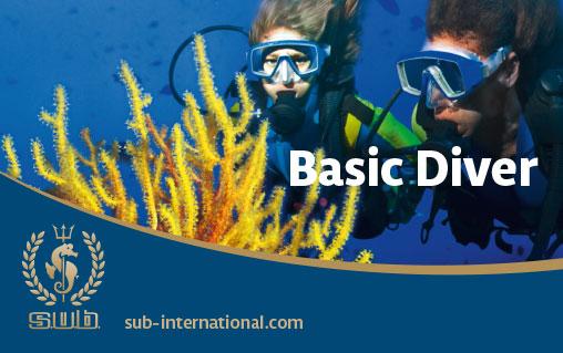 Basic Diver - erste Taucherfahrung im Freiwasser
