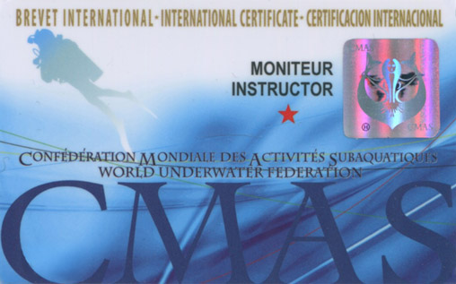 International Diving Instructor*